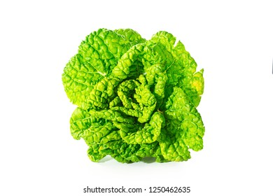 Yellow heart cabbage on white background
