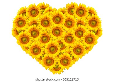 Yellow Heart flower shape of Sunflowers isolated on white background