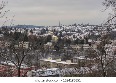 Yellow Hill (Zluty kopec) is one of the hills in the central basin of the city of Brno, southwest to south of the neighboring Kravi hora and west of the historic core and Spilberk Castle.