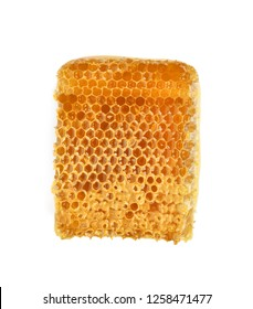 Yellow Honeycomb slice closeup isolated on white background