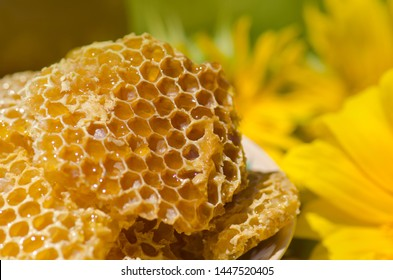 Yellow Honeycomb slice. Honey cell slice. Bowl with fresh honeycombs and honey