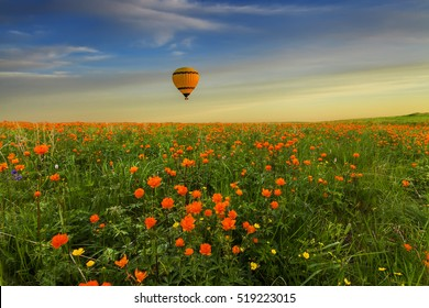 Yellow hot air balloon over the amazing flowering meadow