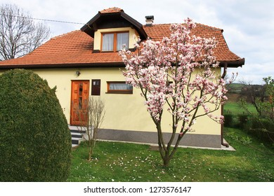Yellow house and magnolia tree with flowers
