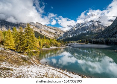 yellow larch in autumn at Lac de Derborence in valais - Shutterstock ID 1847302393