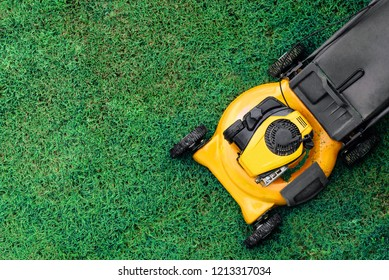 Yellow lawn mowers cut green grass. Garden work concept background, copy space