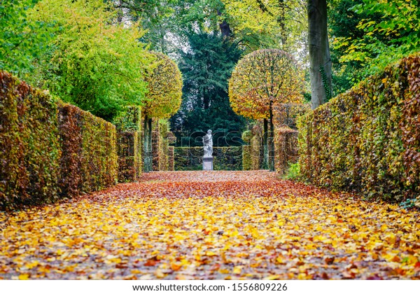 Yellow leaves in german autumn park. Colorful alley background in garden with red gold yellow foliage trees. Vivid golden fall in woodland, Germany. Beautifully trimmed trees bushes in park.