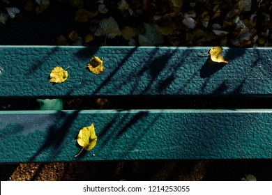 Yellow leaves on wet wooden boards
