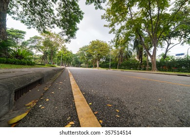 Yellow Line of a Jogging lane in the Park