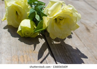 yellow lisianthus (eustoma) flowers on a white wooden background, retro style (copy space, top view)