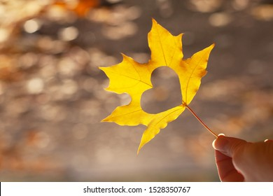 Yellow maple leaf with a heart shaped hole in the middle in the hand of a young girl or woman. Symbol of love, kindness and hope. Autumn fallen leaves on the road. Autumn walk, travel, vacation.