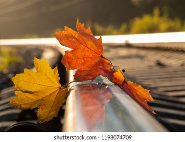 Yellow maple leaf on old rusty rails. Concept of loneliness and the onset of autumn.