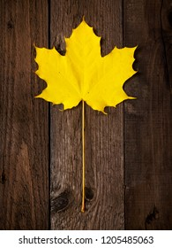 Yellow maple leaf on the wooden background