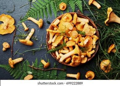 Yellow mushrooms chanterelle (cantharellus cibarius) in bowl decorated fern and forest plants on black kitchen table top view.