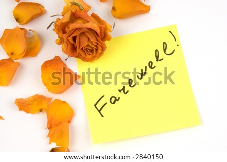 Yellow note paper with inscription farewell, orange rose bud and petals isolated over white
