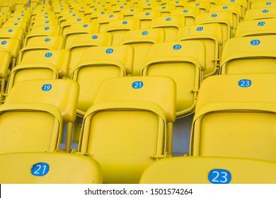 Yellow numbered sports stadium seats