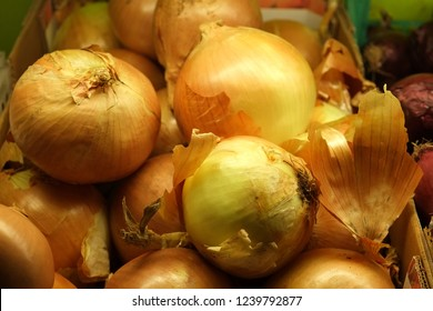 Yellow onions. Close up.