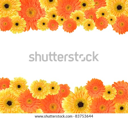 Yellow Orange Daisygerbera Flower Create Frame Stock Photo (Edit Now ...