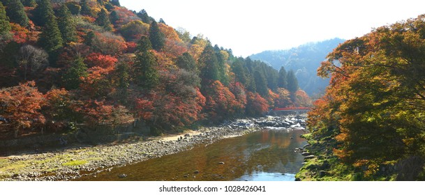 Yellow, orange and red autumn leaves at korankei chubu, Japan.
