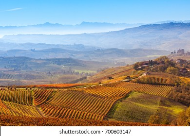 Yellow and orange vineyards and morning fog over the hills on background at autumn in Piedmont, Northern Italy.