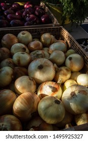 yellow organic onions farmers market