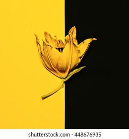 Yellow paint Lily. Minimalism Fashion Art