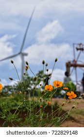 The yellow petal flower with their leaf and blur windmill and swing background