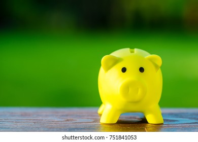 Yellow piggy bank ecological concept for saving, accounting, banking and business account - ecology saving concept