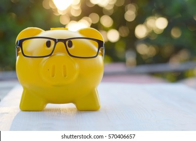 yellow piggy bank wear glasses on blurred bokeh background, smart investment concept