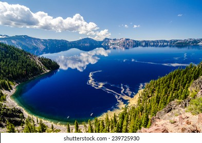 Yellow pine pollen contrasts with the blue surface of Crater Lake, Oregon.