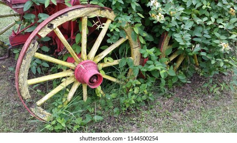 Yellow and pink old wagon  wheel with flowers.Summer Flower Wagon whell