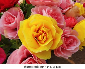 Yellow and Pink Roses - Floristry Concept