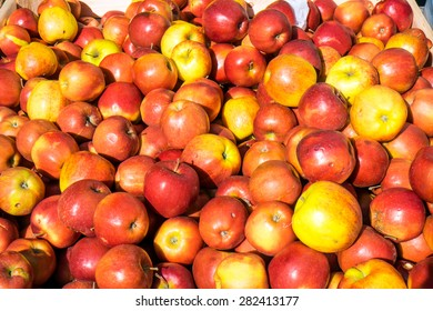 Yellow and red apples for sale at a market