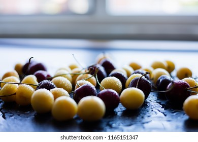 Yellow and red cherries on a black background, selective focus