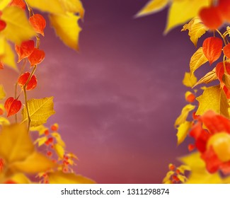 yellow red empty art floral background with frame of golden leaves and fizalis flowers, copy space in center