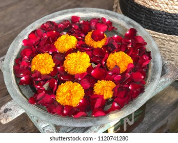 Yellow and red flower petals in a  bowl