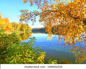 Yellow, red and green trees in forest near river at sunset, with reflection of sky and forest on a water smooth surface, sun's rays break through the foliage of trees