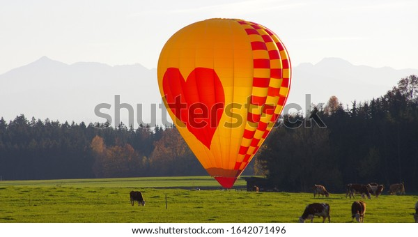 yellow-red-hot-air-balloon-600w-16420714