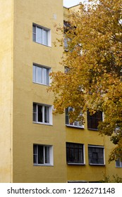yellow residential high-rise building with yellow tree in autumn