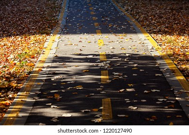 Yellow ribbon on the bicycle road in the town on the autumn time