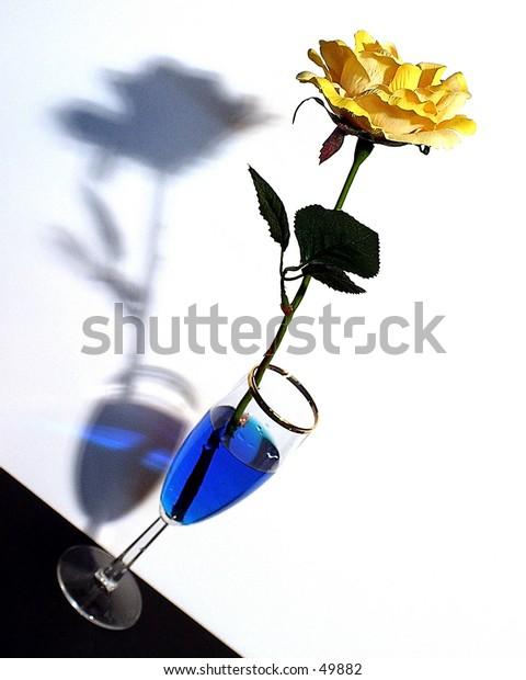 Yellow Rose - Defy Gravity