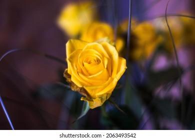 Yellow rose spring wedding decor