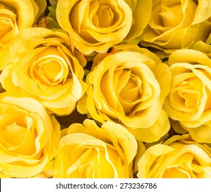 Yellow Roses Background Images Stock Photos Vectors Shutterstock