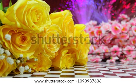Yellow Roses Pink Flowers Lights Background Stock Photo Edit Now