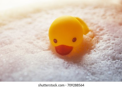 Yellow rubber duck floated on the bubble water.