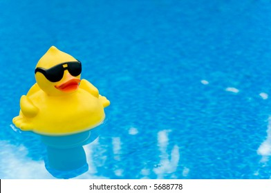 Yellow Rubber duck with shades on blue water, space for copy