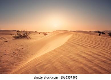 Yellow sands of desert at dusk. Colorful evening in Dubai desert.
