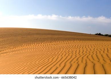 Yellow sandy wavy dunes in desert at daytime. Nobody. Nature landscape.