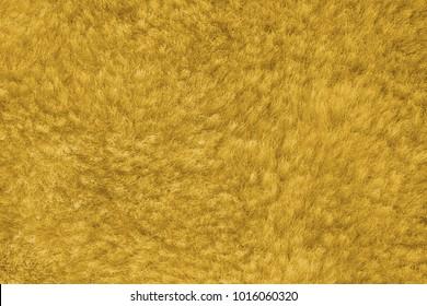 yellow shaggy skin of an animal closeup texture, Fur Texture