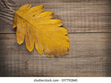 yellow sheet on a wooden background
