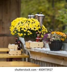 yellow Small chrysanthemum